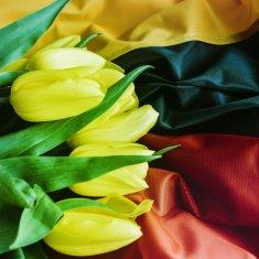 Nepriklausomybė buvo siekis, kuris suvienijo tautą ir uždegė širdis. Su KOVO 11 - ąja !
